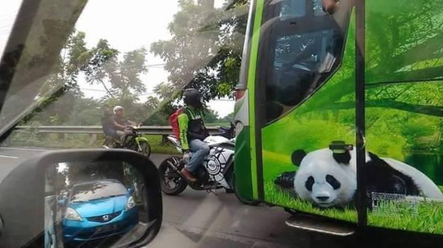 bus-menerobos-dii-hadang-ninja-fi2